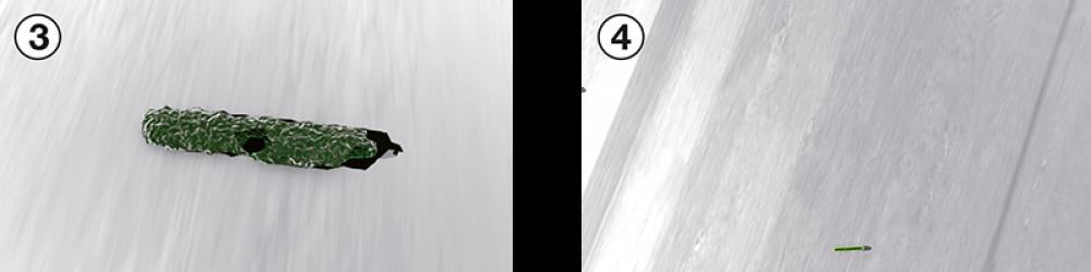 Il germe muore (3) e la presenza di batteri sulla superficie è notevolmente ridotta (4) - Serramenti Torino